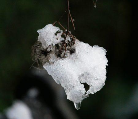 vagabondageautourdesoi-neige-wordpress-1010185